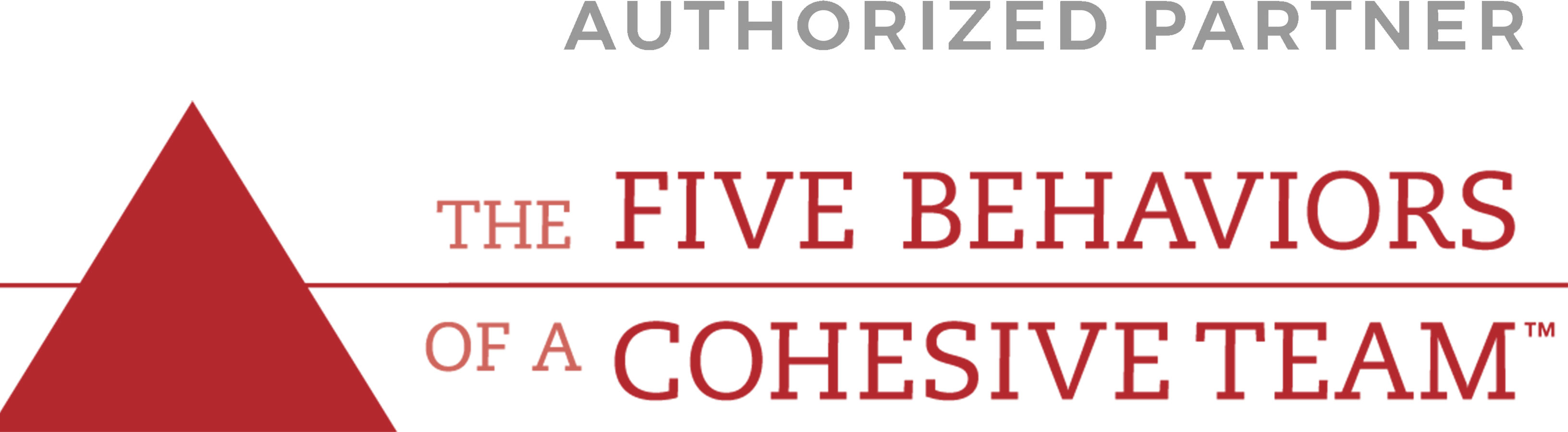 Five Behaviors of a Cohesive Team™ Authorized Partner