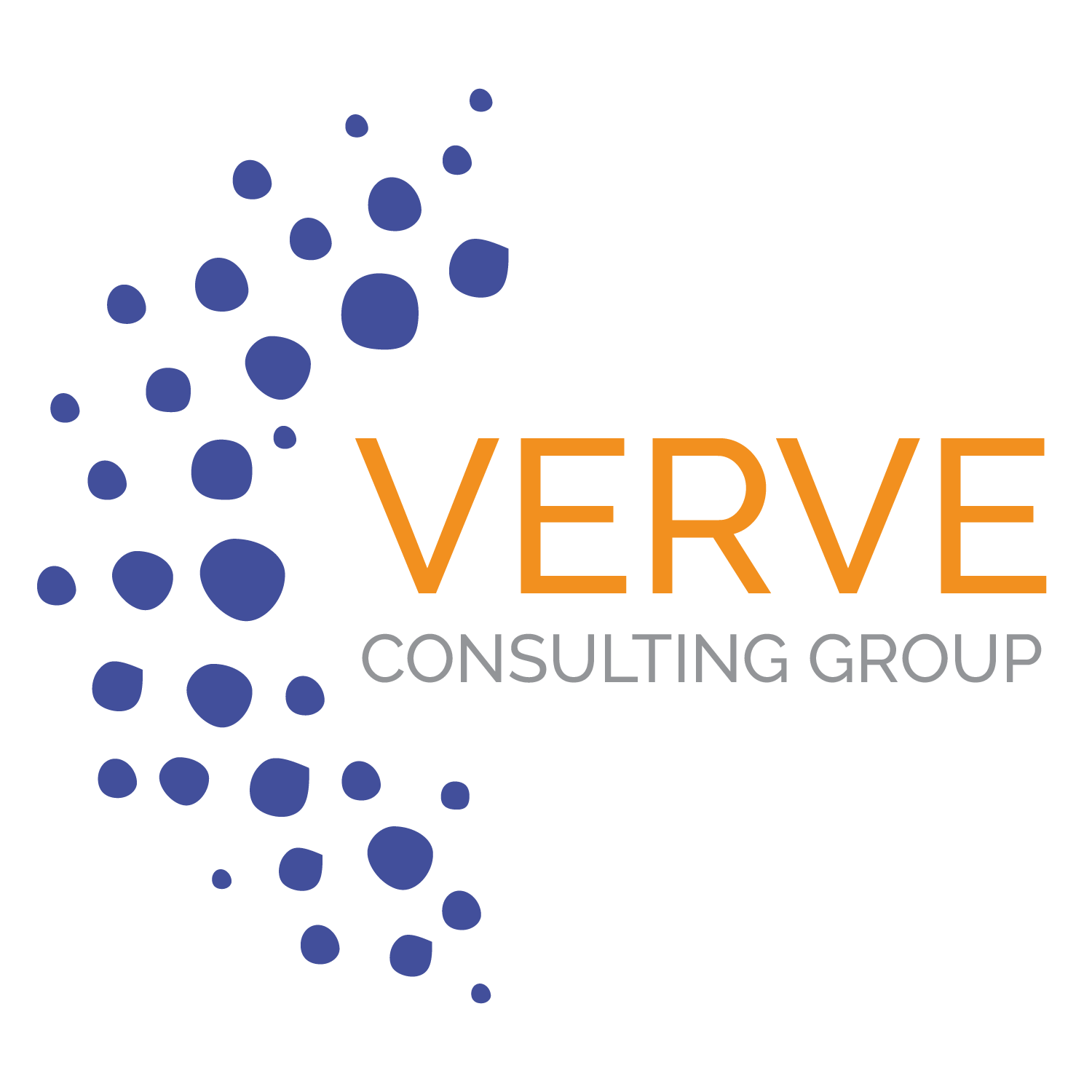 Verve Consulting Group